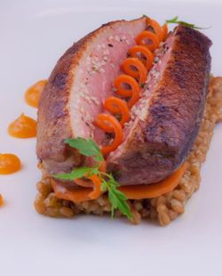 Duck & carrots, hemp seeds
