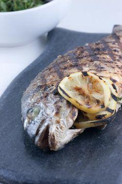 FISH IMG_4830