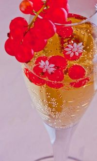 DRINK - champagne & red currants