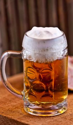BEVERAGE beer in mug