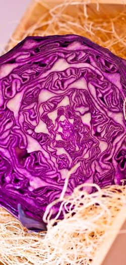 VEGETABLE red cabbage