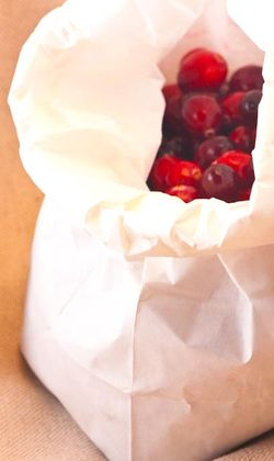 FRUIT cranberries in a bag