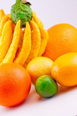 FRUIT citrus fruits