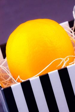 FRUIT citrus meyer lemon in gift box