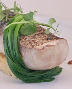 FISH striped bass with ramps and millet