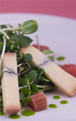 Klee Rhubarb, cheese salad