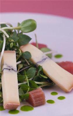 Klee Rhubarb, cheese salad