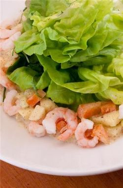 Shrimp salad with bibb lettuce