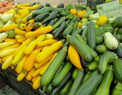 Zucchini mixed