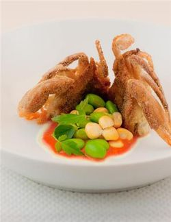 Zucchini and soft shell crab