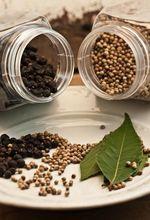 KRAUT spices