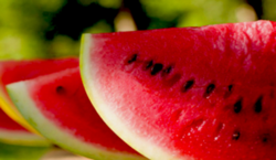 Water melon 5
