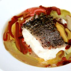 Steamed striped bass