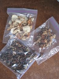 Dried mushrooms in a bag