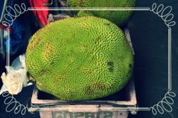 001 jackfruit skin