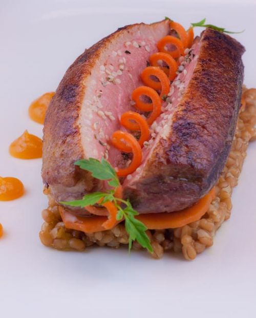 Duck & Bunch Carrots, Hemp Seeds on Cracked Wheat Berries with Apricot Puree