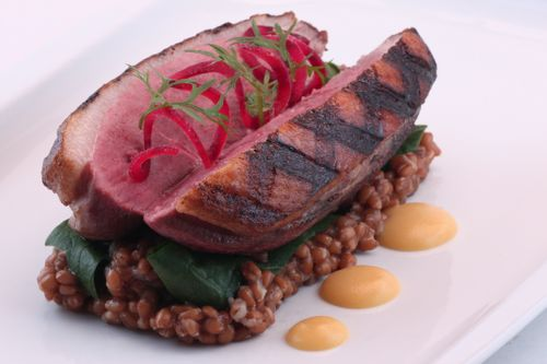 Duck & Wheatberries with Lemon Peel Puree