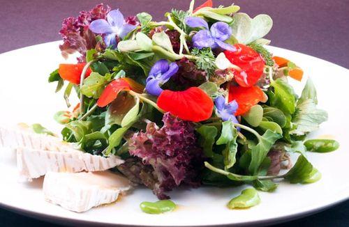 Wild cress, Fava Beans, Violets, Husdon Valley Camembert
