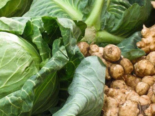 cabbage & Jerusalem artichokes